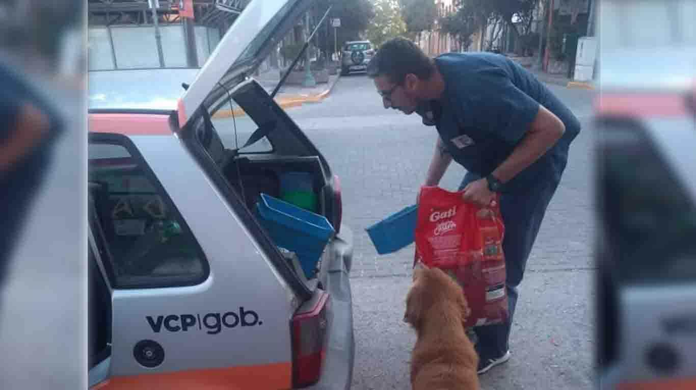 The municipality of Villa Carlos Paz distributes food to street dogs. (Photo: Carlos Paz Alive: