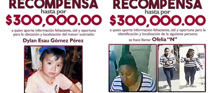 The prosecution offered a reward to find Ofelia 'N' (Photo: Special)